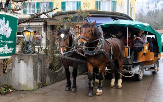Horse and carriage rides up to Neuschwanstein Castle