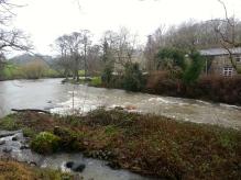 River Derwent, Cockermouth