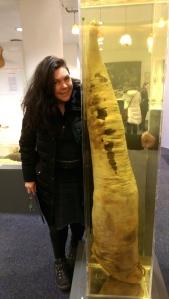 Whale Penis - Penis Museum