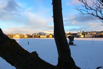 Frozen Lake & Reykjavik
