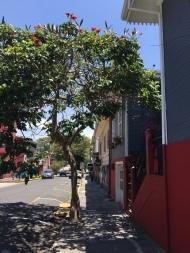 Barrio Amon