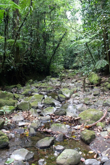 Walk to Cerro Chato from Arenal Observatory (the nice bit)