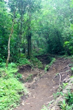 Cerro Chato hike - fails to display how steep this is!