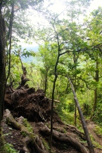 Cerro Chato hike - stopped lots for view photos (secretly to breath!)