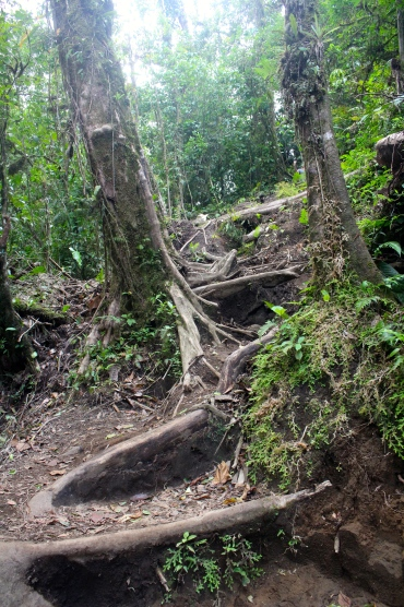 Cerro Chato hike - climbing is not my idea of a nice hike!