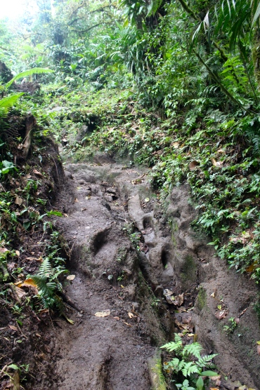 Cerro Chato mud climbing!