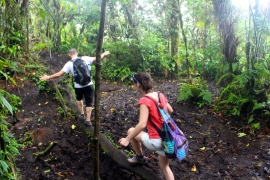 Jungle walk around the crater