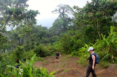 Cerro Chato hike - no photos on walk down as too busy slipping on my bum - happy to out of the jungle but now even worse as no trees to hold onto!