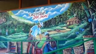 Coffee, Chocolate and Sugar Cane Tour at Don Juan Plantation