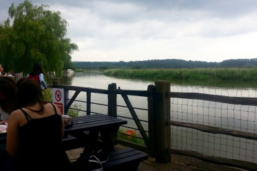 River Arun from Black Rabbit pub
