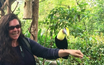 Getting friendly with a Chestnut Mandibald Toucan
