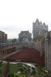 Tower Bridge and poppies