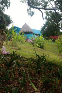 My villa from the nature walk, Xandari Resort