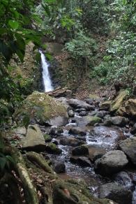 Nature Walk, Xandari Resort