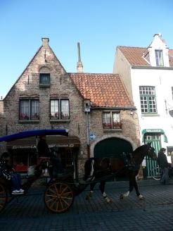 Wijngaardstraat 14