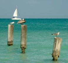 Dickinsons Bay