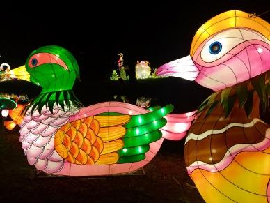 Magical Lantern Festival, Chiswick House