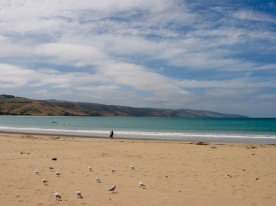 Apollo Bay, Great Ocean Road