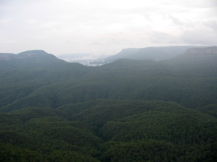 Blue Mountains, feeling like I'm in Jurassic Park
